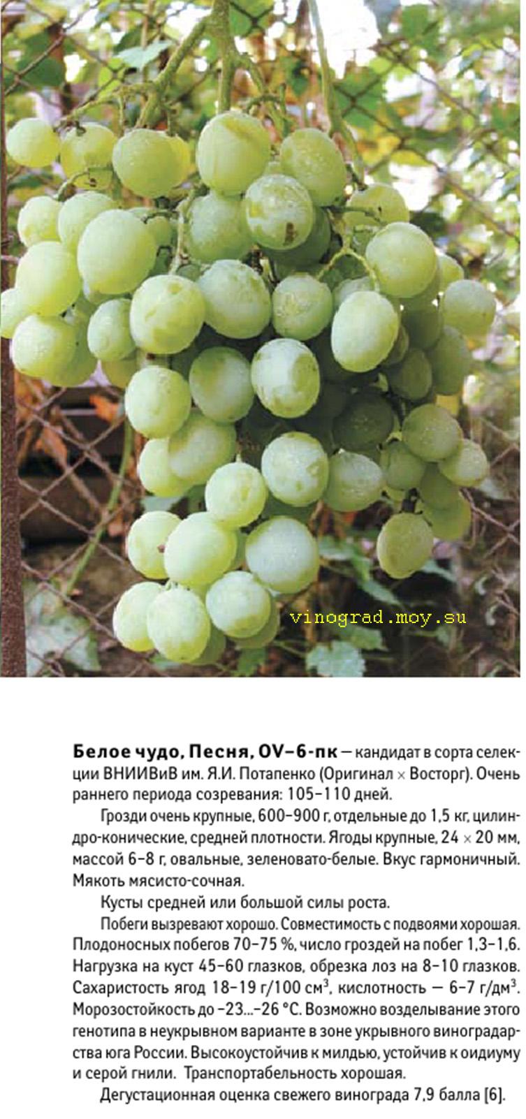 пожарной инспекции виноград песня описание сорта фото добавленные компании