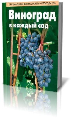 Виноград в каждый сад