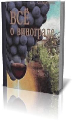 Все о Винограде