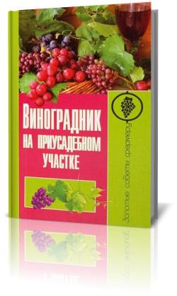 Виноград на приусадебном участке